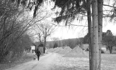 Joy Walk in the Silence (III)